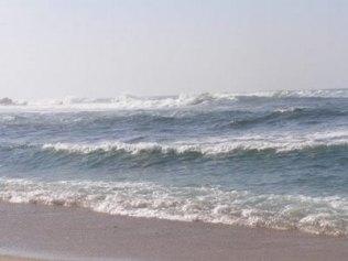 Os oceanos abrigam uma variedade de relevos